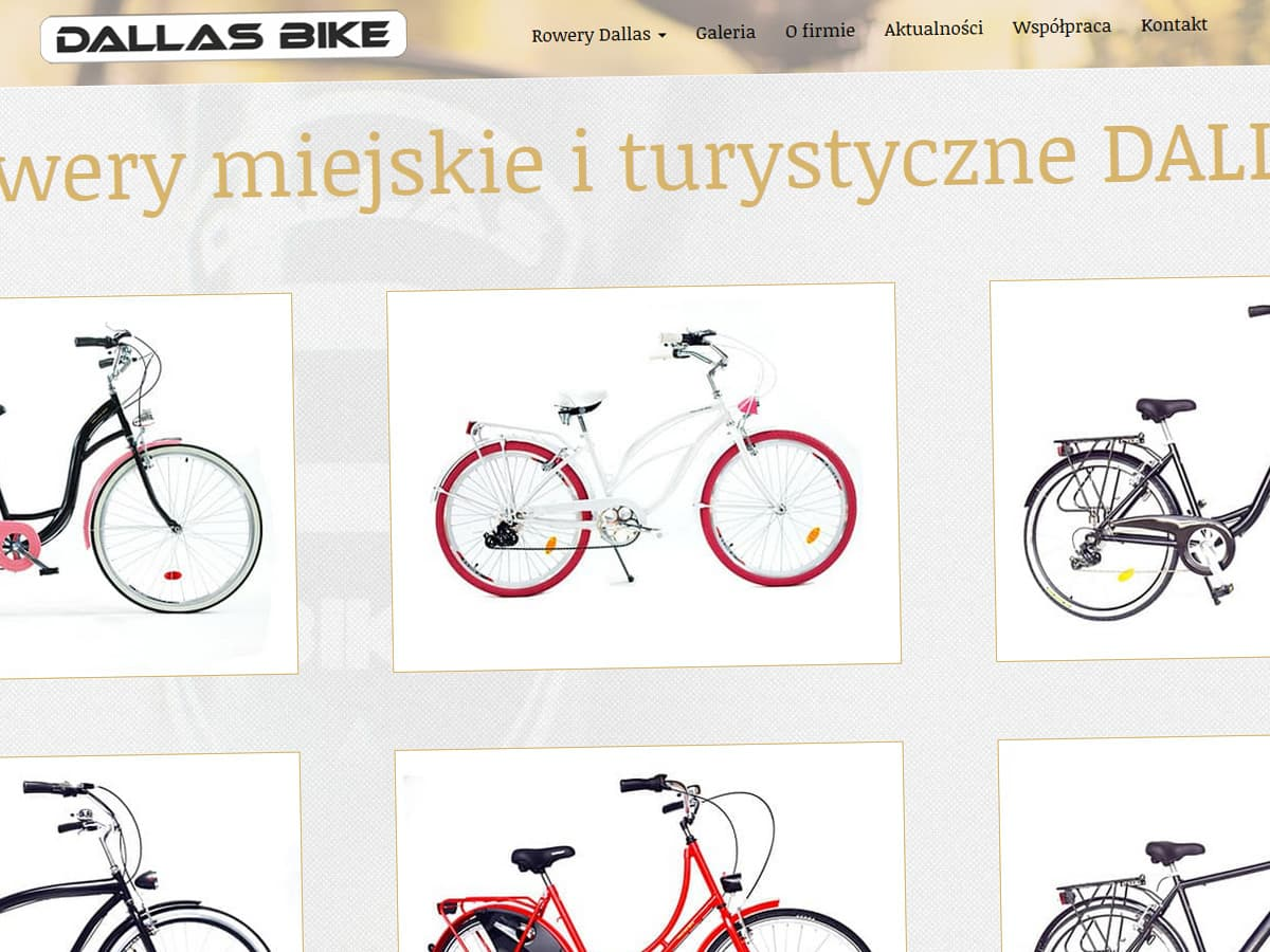dallasbike-pl-realizacja-2