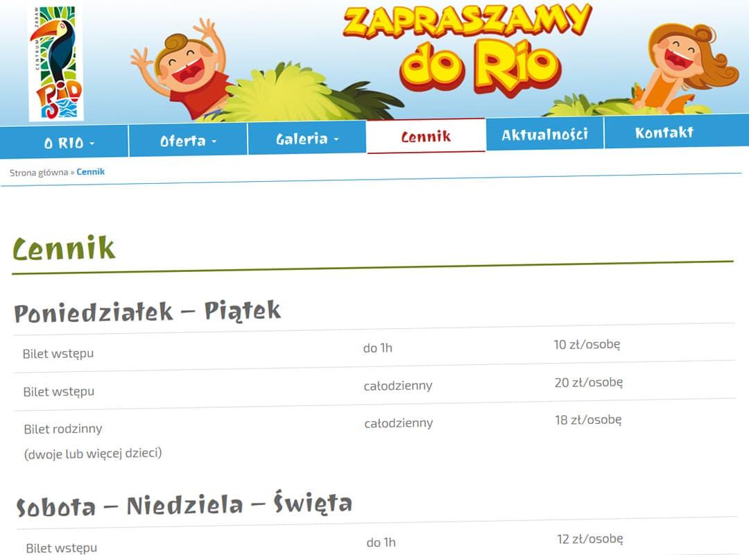 rio-wloclawek-pl-realizacja-3