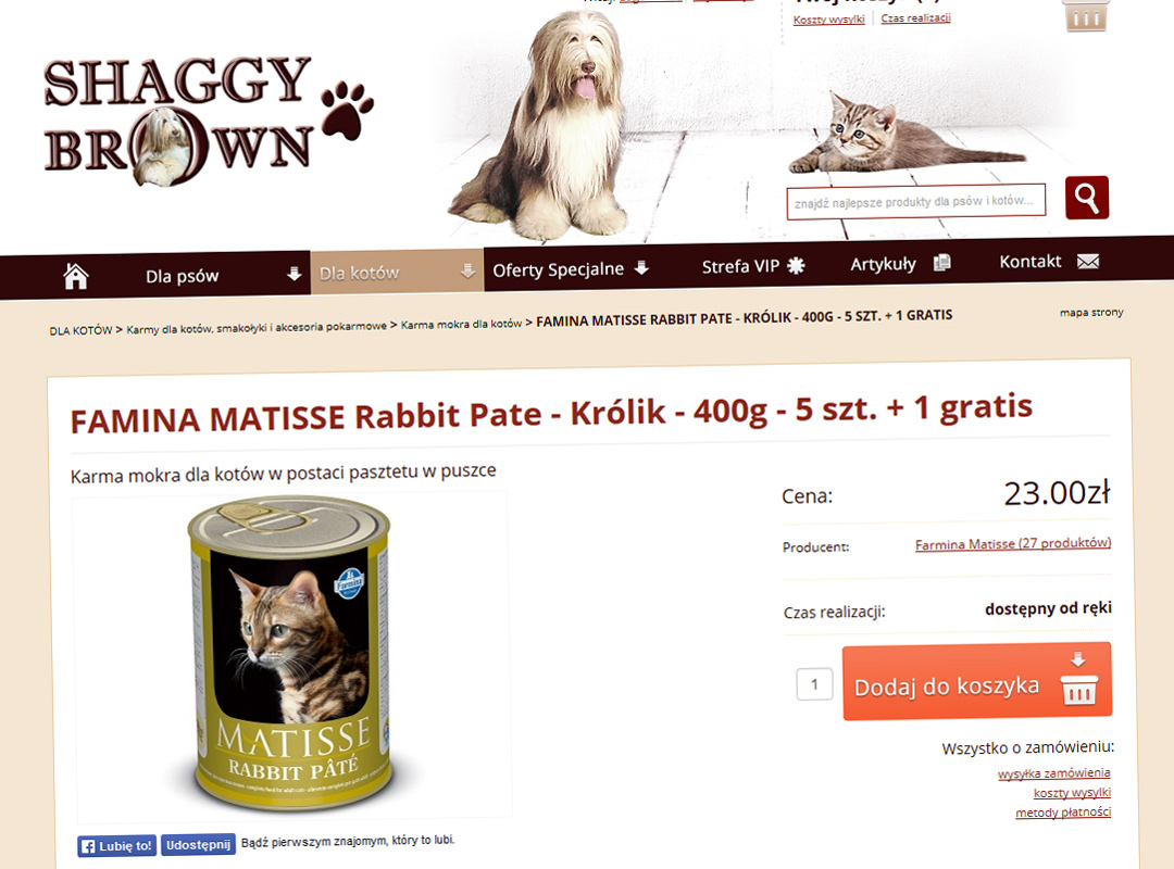 www.shaggybrown.pl-realizacja-5