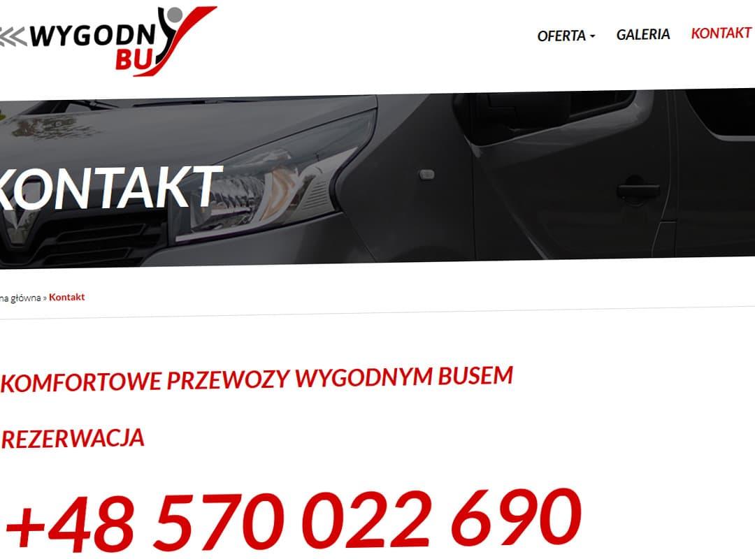 wygodnybus-pl-realizacja-10