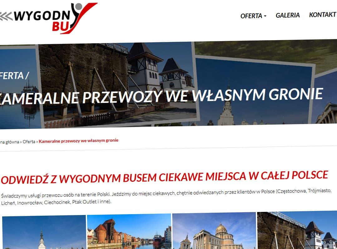 wygodnybus-pl-realizacja-5